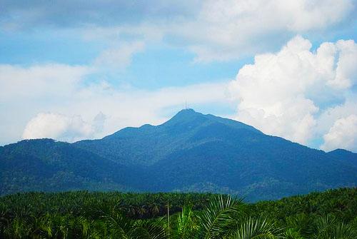 Mount Ophir or Gunung Ledang